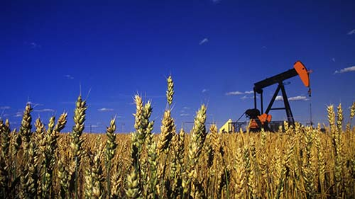 pumpjack with wheat